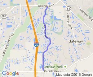 Treeline Ave |  Florida