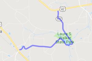 Laura Walker State Park road |  Georgia