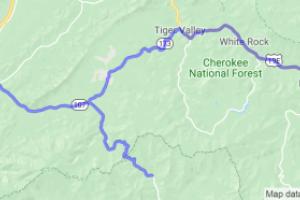 Iron Mountain to Fork Mountain to Roan Mountain Loop |  Tennessee