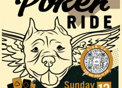Pitbull Poker Ride |  New Hampshire