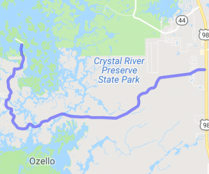 The Ozello Trail Ride |  Florida