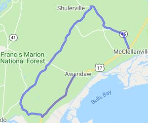 Francis Marion National Forest - Coastal Plains |  South Carolina